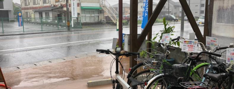 久しぶりの本降りの雨です。